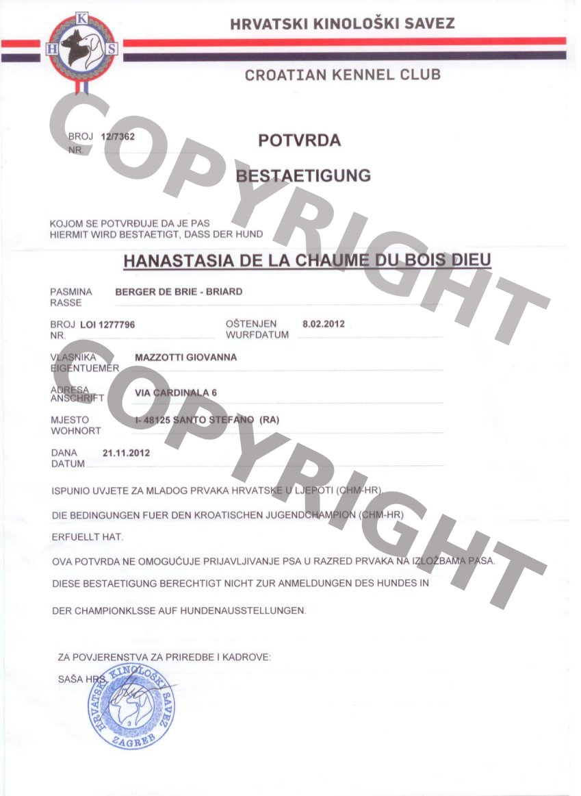 h-croazia121212082716-copy