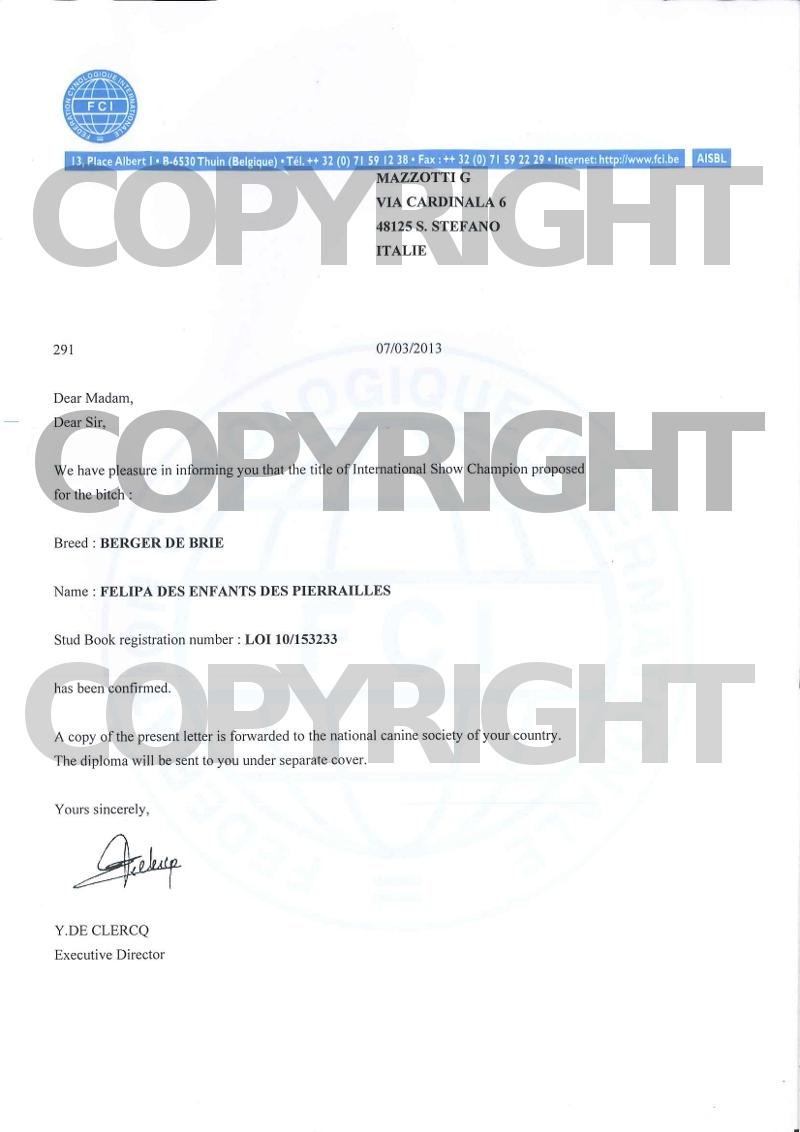 felipa-certificato-campione-internazionale