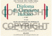 diploma-campione-italiano-felipa