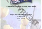 attestato-campione-europeo-2011-copy